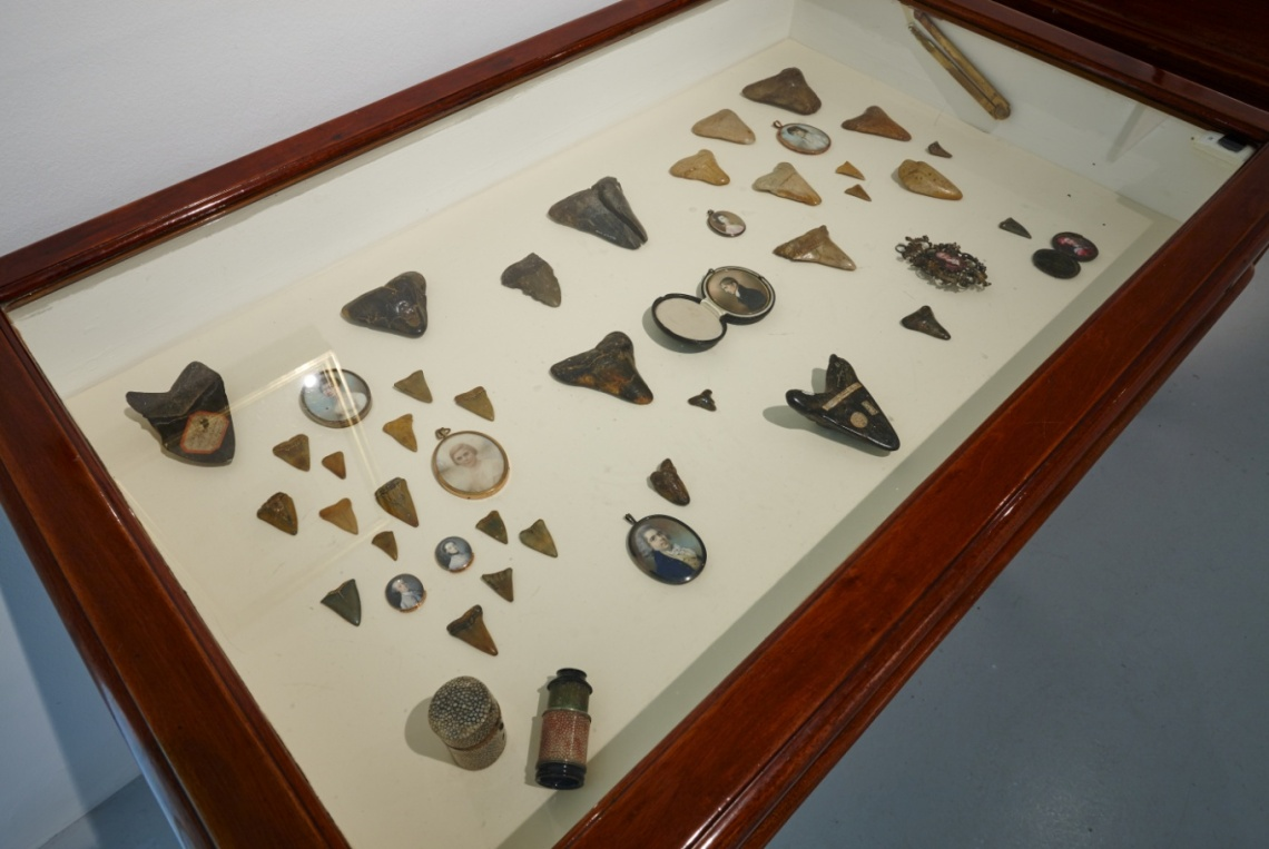 A selection of Fossil shark teeth (NMI) placed alongside a selection of miniatures (NGI) and a Spy glass (NMI) Denis Mortell Photography