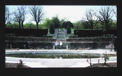 Niamh O'Malley, 'The Memorial Gardens', 2008, Video projection, oil on etched-primed aluminium, Duration: 7min.22 sec. loop, 140 x 250 x 5.5 cm, Collection Irish Museum of Modern Art, Purchase | 2010